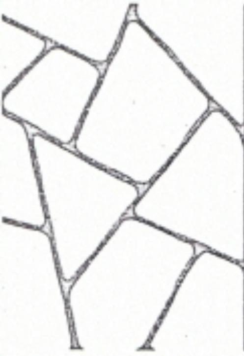 Liquid Limestone – EDC WA